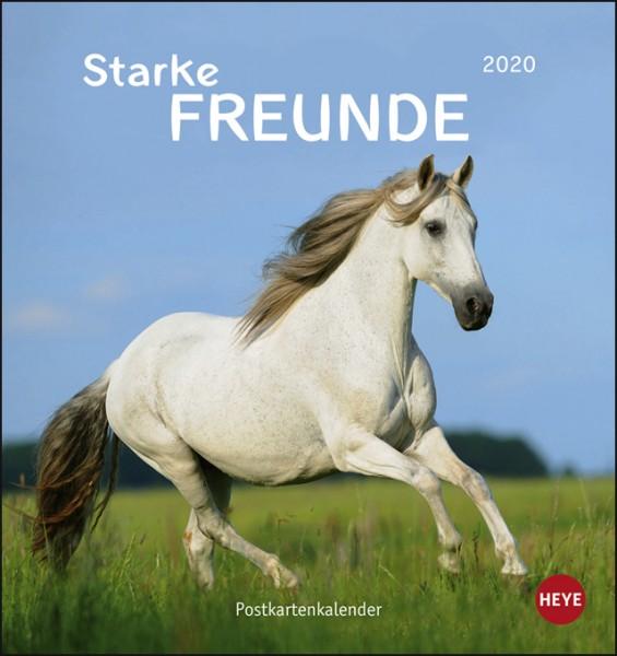 Pferde PKK 2020 - Starke Freunde