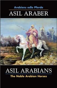 Asil Araber VII