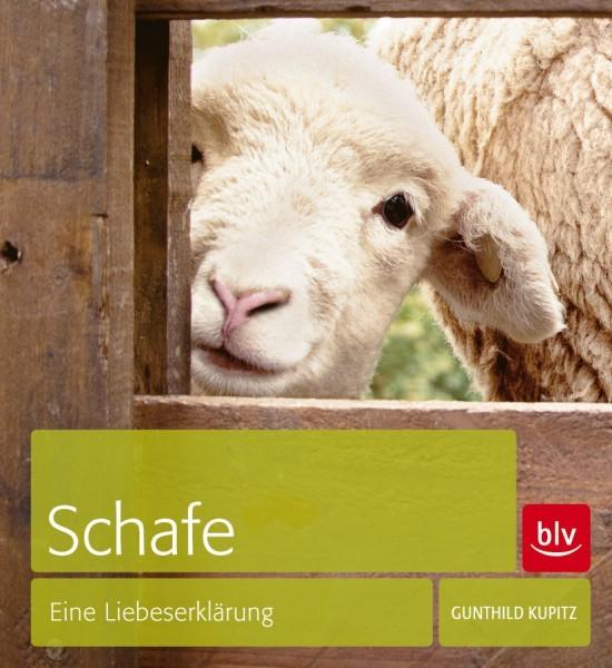 Kupitz: Schafe - Eine Liebeserklärung