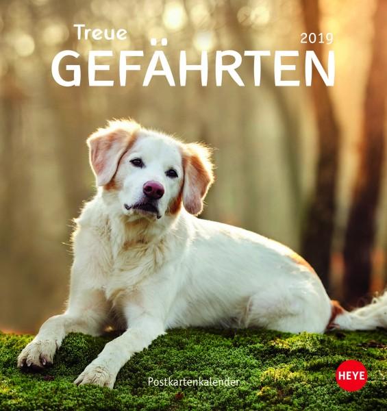 Hunde - Treue Gefährten 2019
