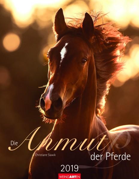 Die Anmut der Pferde 2019