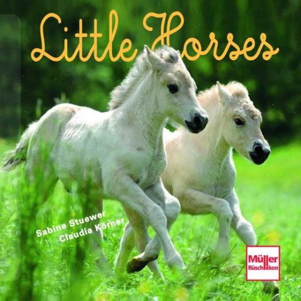Little Horses Geschenkband