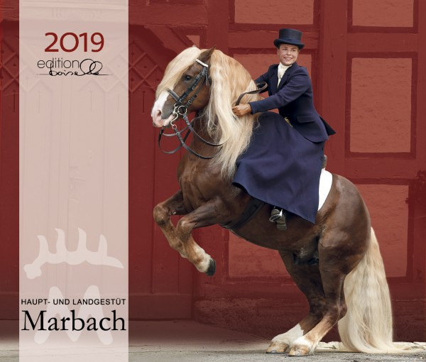 Haupt- und Landgestüt Marbach 2019 Boiselle