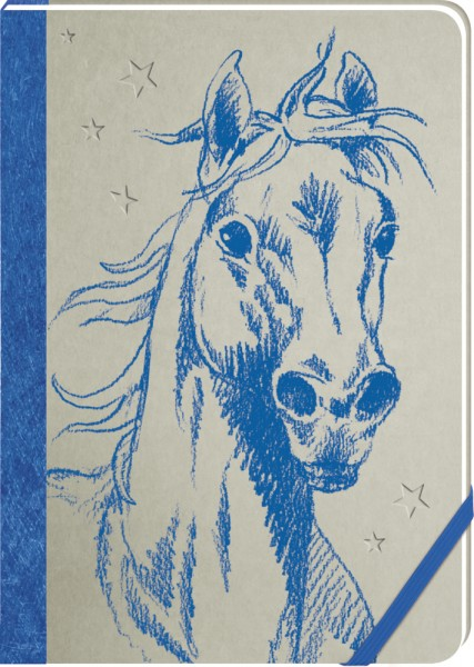 Pferdefreunde-Meine Notizen ( blau )