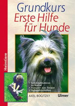 Grundkurs Erste Hilfe für Hunde
