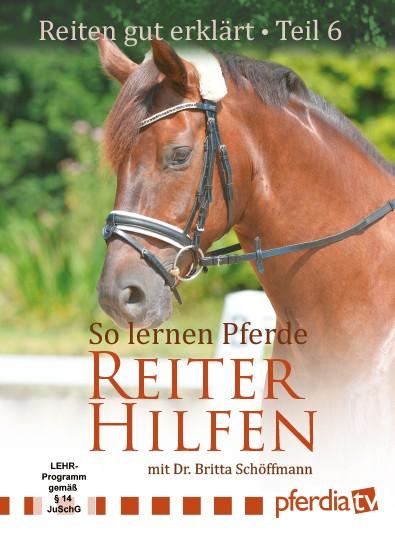 Reiten gut erklärt Teil 6: So lernen Pferde Reiterhilfen