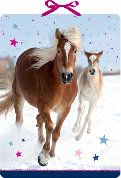 Pferdefreunde im Schnee - Adventskalender