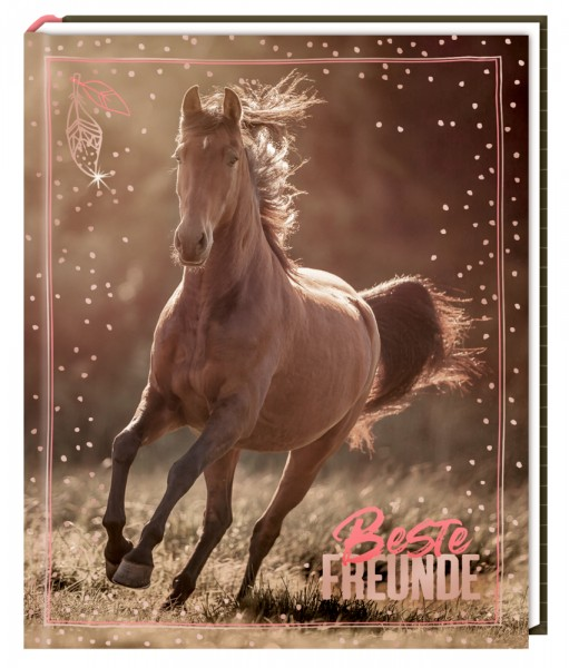 Freundebuch I LOVE HORSES - Beste Freunde