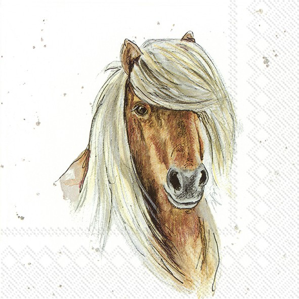 "FARMFRIENDS ""HORSE"" - Lunch-Servierte"