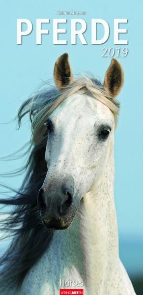 Pferde XL 2019
