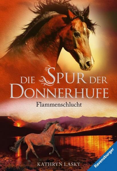 Die Spur der Donnerhufe Bd.1 - Flammenschlucht (Softcover)