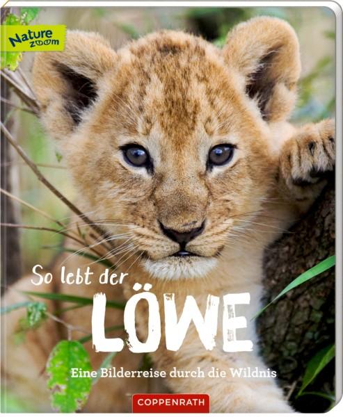 So lebt der Löwe - Eine Bilderreise