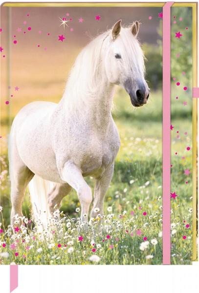 Meine Notizen - Pferdefreunde