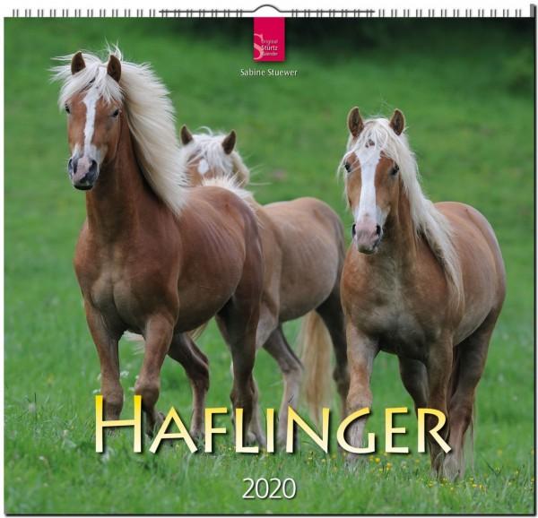 Haflinger 2020 - Original STÜRTZ-Kalender
