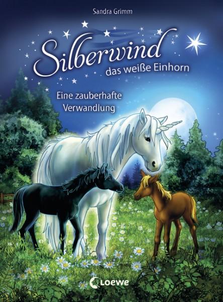 Silberwind Bd. 9 - Eine zauberhafte Verwandlung
