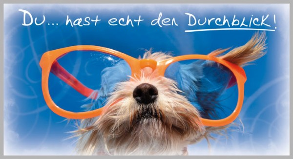 Postkarte Arte Viva Tierwelt Du...hast echt den Durchblick