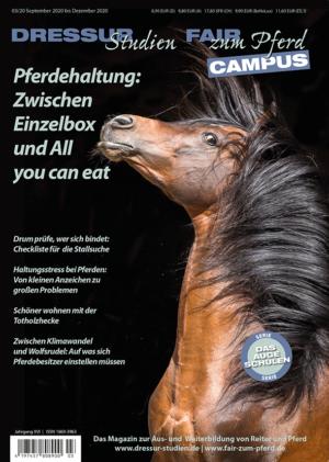 Optimale Pferdehaltung: Zwischen Einzelbox und All you can eat