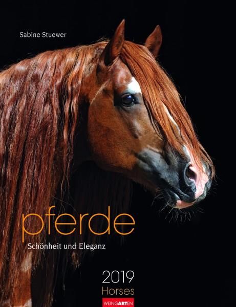 Pferde Schönheit und Eleganz 2019