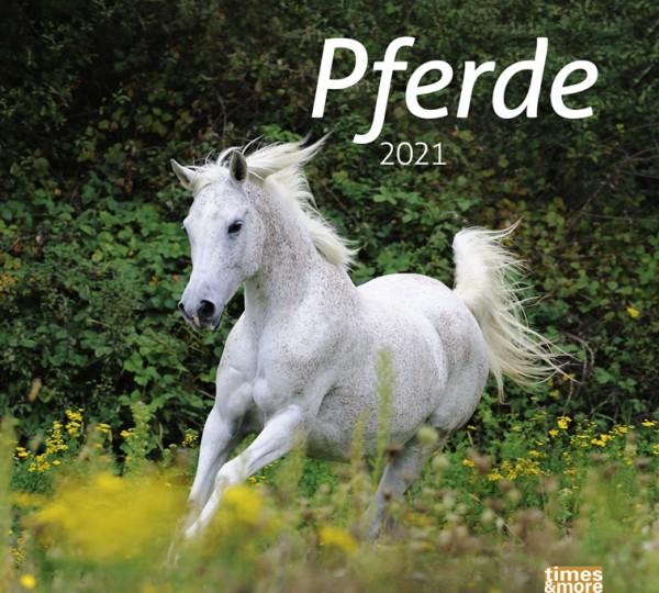 times&more Pferde Bildkalender 2021