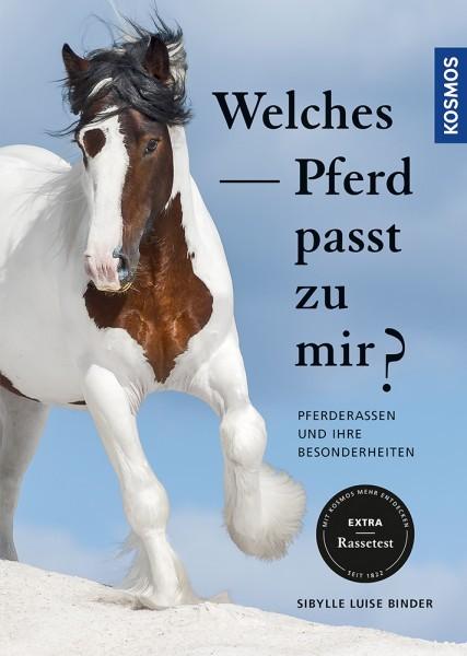 Welches Pferd passt zu mir?