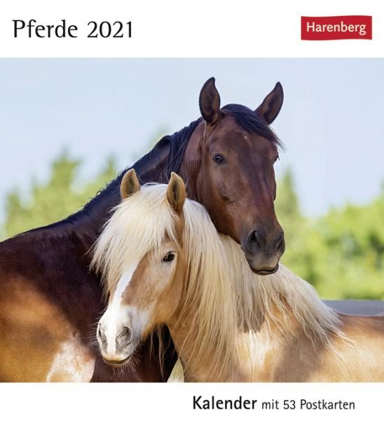 Postkartenkalender Pferde 2021