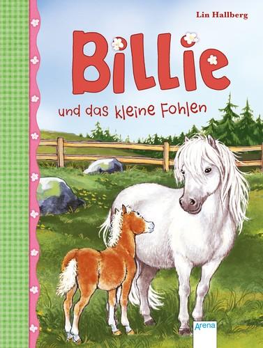 Billie und das kleine Fohlen. Bd. 4