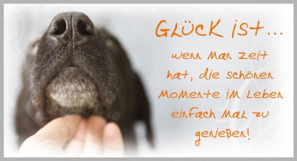 Postkarte Arte Vita Tierwelt Glück ist...wenn man Zeit hat