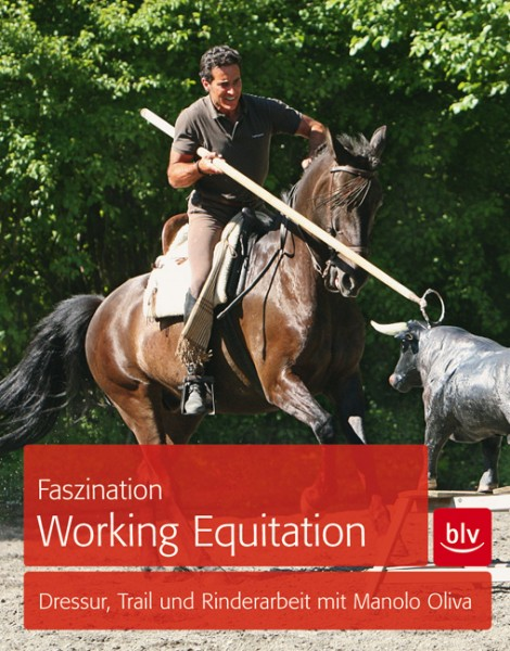 Faszination Working Equitation