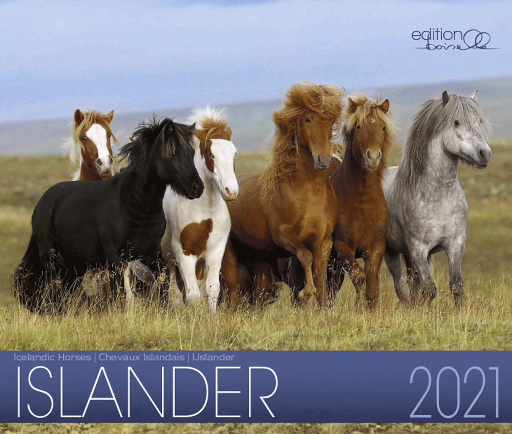 Isländer 2021 Boiselle