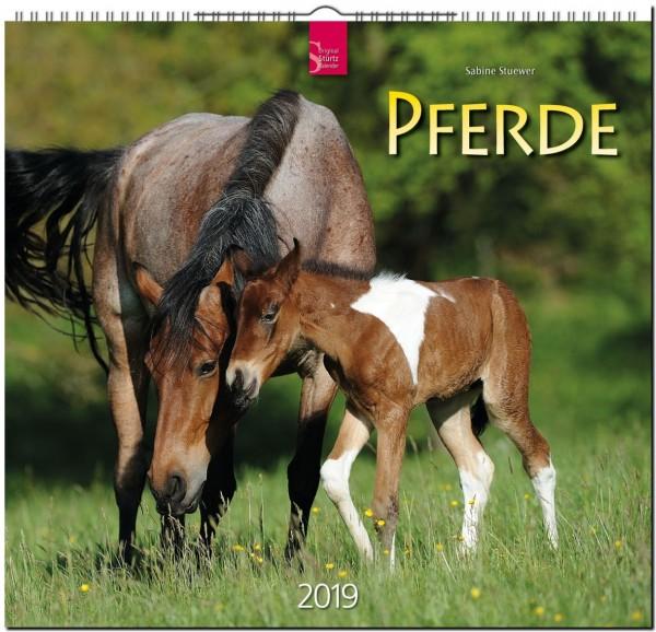 Pferde 2019 - Original STÜRTZ-Kalender