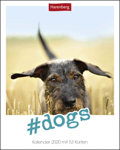#dogs Postkartenkalender 2020