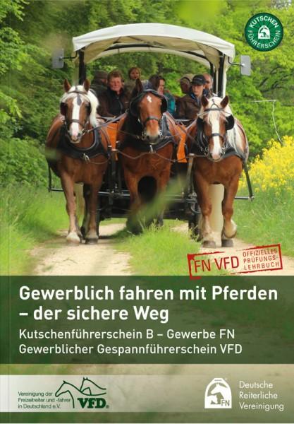 Gewerblich fahren mit Pferden – der sichere Weg