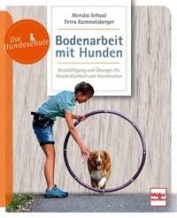 Bodenarbeit mit Hunden - Die Hundeschule