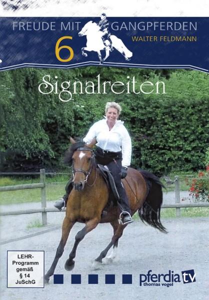Signalreiten Feldmann DVD Teil 6