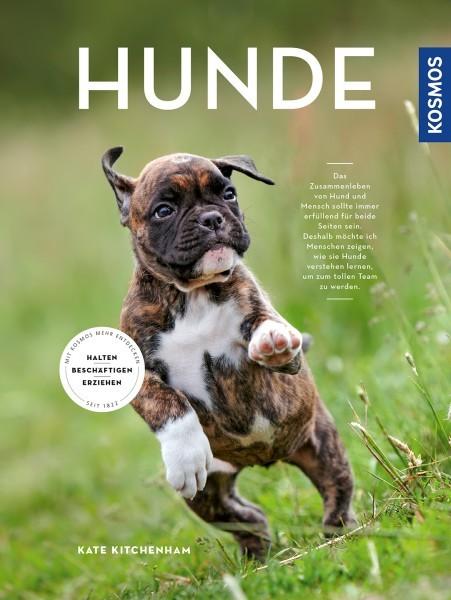 Hunde halten, erziehen, beschäftigen - Taschenbuch