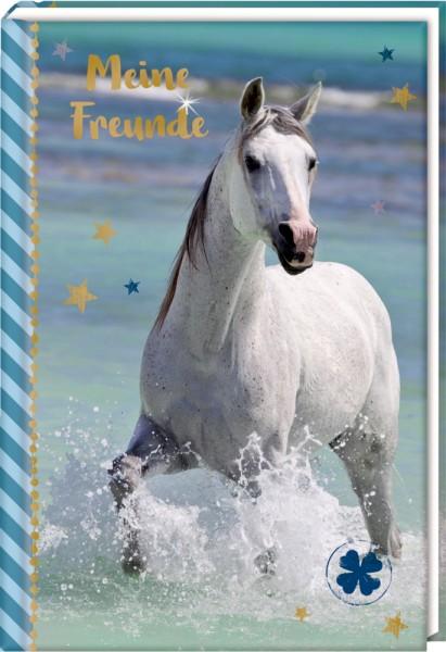 Freundebuch: Pferdefreunde - Pferd am Meer (blau)