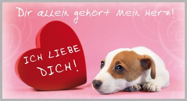 Postkarte Arte Vita Tierwelt Dir allein gehört mein Herz