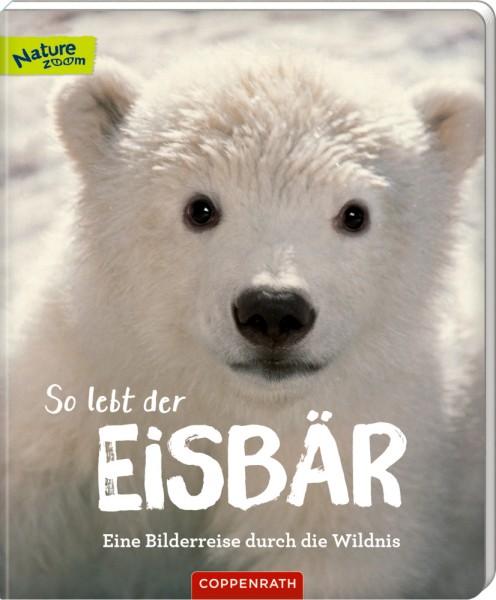 So lebt der Eisbär - Eine Bilderreise