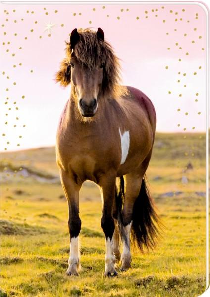 Pferdefreunde - DIN A5