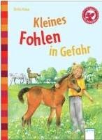 Bücherbär Erstleser: Kleines Fohlen in Gefahr